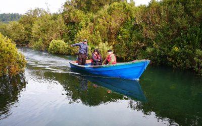Ministerio del Medio ambiente y Consejo de Monumentos Nacionales visitaron humedales de Maullín