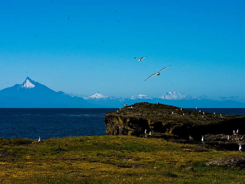 Coastal Marine Space for Native People, Desertores Islands- Chaitén, Chile.