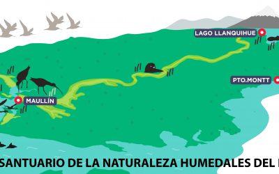 Aprueban declaración de los humedales de Maullín como Santuario de la Naturaleza