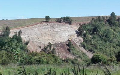 """COMUNICADO PÚBLICO; destrucción del bosque nativo de ribera dentro del Sitio Prioritario para la Conservación de la Biodiversidad """"Rio Maullín"""""""