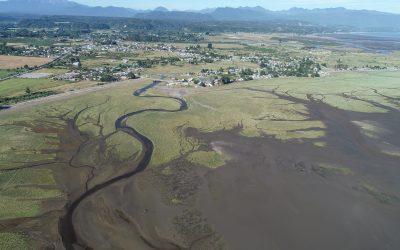 Humedal marino de Chamiza ingresa a la Red Hemisférica de Reservas para aves Playeras – RHRAP